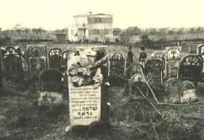 Warka: The Jewish cemetery in Warka (Bielańska Street)