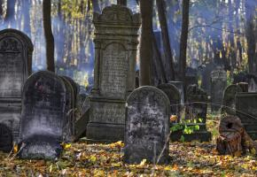 A special law aimed at rescuing the Jewish cemetery at Okopowa Street