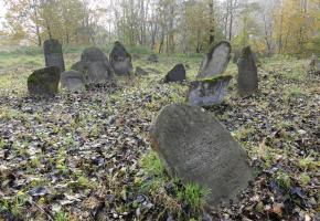 Bircza: Cmentarz żydowski w Birczy (ul. Ks. Prałata Rębisza)