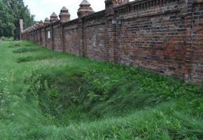 Doły na cmentarzu przy ul. Brackiej – groby dla żydowskich robotników pozostawionych po likwidacji getta