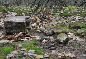 Cmentarz żydowski w Aleksandrowie (ul. Podkowy)