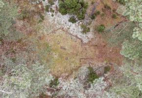 Szumowo. Zbiórka na upamiętnienie miejsc masowych pochówków w Lesie Rząśnik.